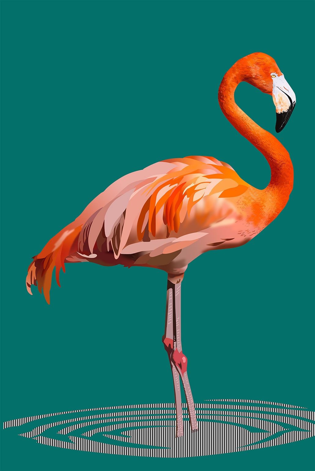 Illustration-flamingo-04